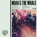 L.I.F.E.G.O.E.S.O.N. (Clean) (Radio Single) thumbnail