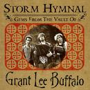 Storm Hymnal: Gems From The Vault Of Grant Lee Buffalo   thumbnail
