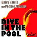 Dive In The Pool 2008 (Single) thumbnail