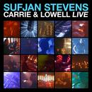 Carrie & Lowell Live thumbnail