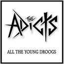 All the Young Droogs thumbnail