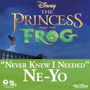 Never Knew I Needed (Radio Single) thumbnail