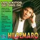 Los Exitos De Oro De Hildemaro thumbnail