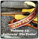 Volume 14 - Followin' The Feelin' thumbnail