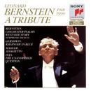 Leonard Bernstein (1918-1990): A Tribute thumbnail