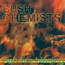 Dub Fire Blazing thumbnail