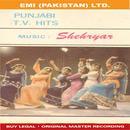 T.V Hits ( Punjabi ) thumbnail