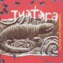 Tuatara thumbnail