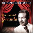 15 Grandes Exitos thumbnail