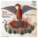 The Phoenix Rising thumbnail