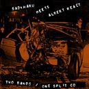 Sadaharu Meets Albert React - EP thumbnail