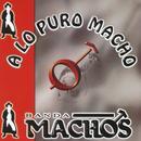 A Lo Puro Macho thumbnail