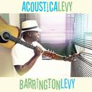 Acousticalevy thumbnail