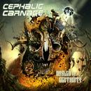 Misled By Certainty thumbnail