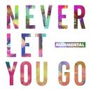 Never Let You Go (Single) thumbnail