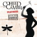 Feathers (Glitch Mob Remix) thumbnail