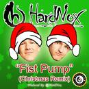 Fist Pump (Christmas Remix) (Single) thumbnail