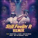 Still Feelin' It (Remix) (Single) (Explicit) thumbnail