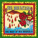 The Best of Big Mountain thumbnail