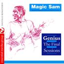 Genius - The Final Sessions (Digitally Remastered) thumbnail