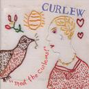 """Meet The Curlews!"" thumbnail"