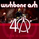40th Anniversary Concert - Live In London thumbnail