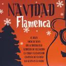 Navidad Flamenca thumbnail