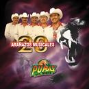 20 Aranazos Musicales thumbnail