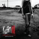 Korn III - Remember Who You Are (Special Edition) (Explicit) thumbnail