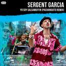 Yo Soy Salsamuffin (Pachanguito Remix) (Single) thumbnail
