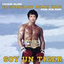 Soy Un Tiger thumbnail