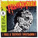 I Was A Teenage Shutdown thumbnail