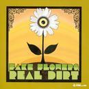 Fake Flowers Real Dirt thumbnail