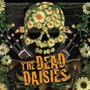 The Dead Daisies thumbnail