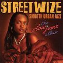 The Slow Jamz Album thumbnail