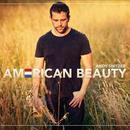 American Beauty thumbnail