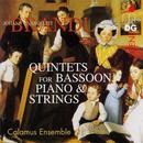 Brandl: Quintets for Bassoon, Piano & Strings thumbnail