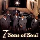 7 Sons Of Soul thumbnail