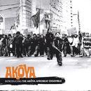 Introducing The Akoya Afrobeat Ensemble thumbnail