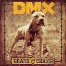 Grand Champ thumbnail