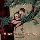Mending The Meaning - Acoustic Ep thumbnail