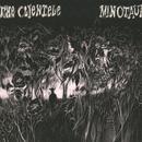 Minotaur thumbnail