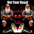 Not Your Usual Mandolin & Tuba Duo thumbnail