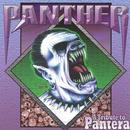 Panther - A Tribute To Pantera thumbnail