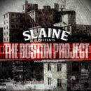 The Boston Project thumbnail