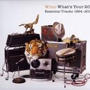 What's Your 20? Essential Tracks 1994 - 2014 thumbnail