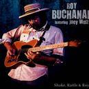 Roy Buchanan Ft. Joey Welz thumbnail