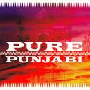 Pure Punjabi thumbnail