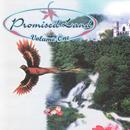 Promised Land-Volume One thumbnail