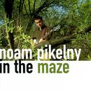 In The Maze thumbnail